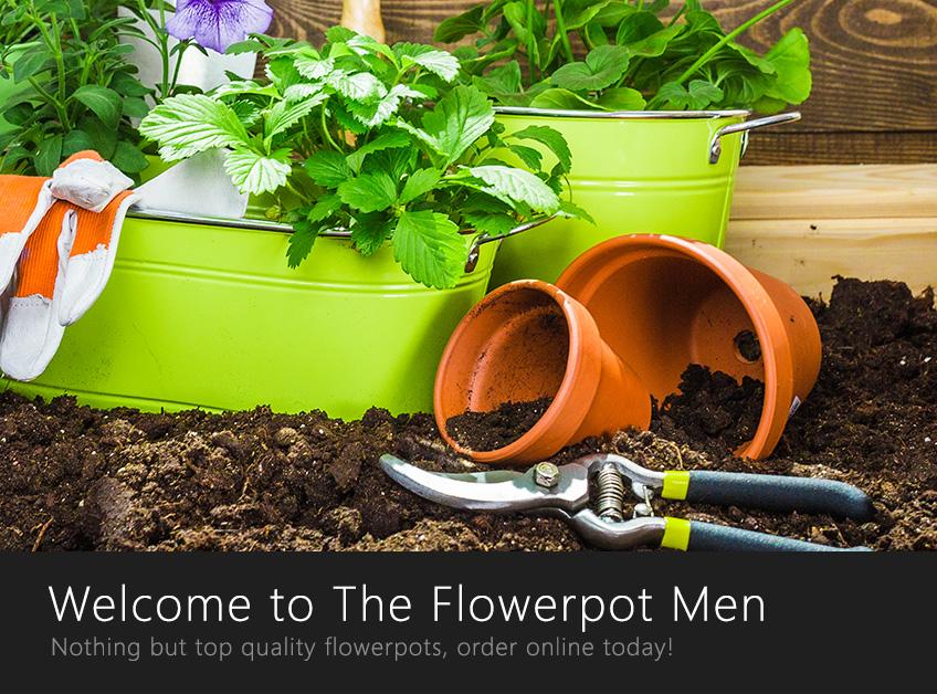 The Flowerpot Men