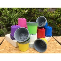 50 x COLOURED 12CM PLANT POTS